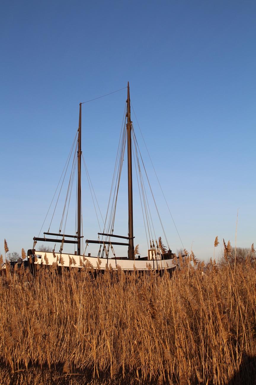 Trocken gelegtes Schiff im Zingster Hafen - Segeln im Schilf