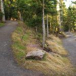 Weg vom Parkplatz zum Eingang des Baumwipfelpfad