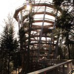 Der Aussichtsturm des Baumwipfelpfad von unten Bad Wildbad
