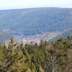 Blick vom Baumwipfelpfad Bad Wildbad Schwarzwald