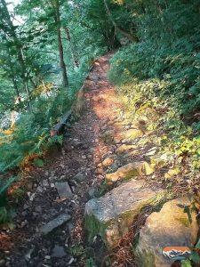 Steiniger Weg Wanderpfad auf den Ölberg