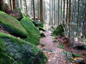 Felsen Wanderweg