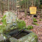Erlenbrunnen